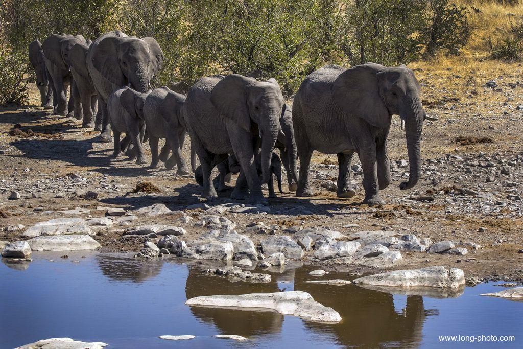 我们出发吧:纳米比亚、博茨瓦纳、维多利亚