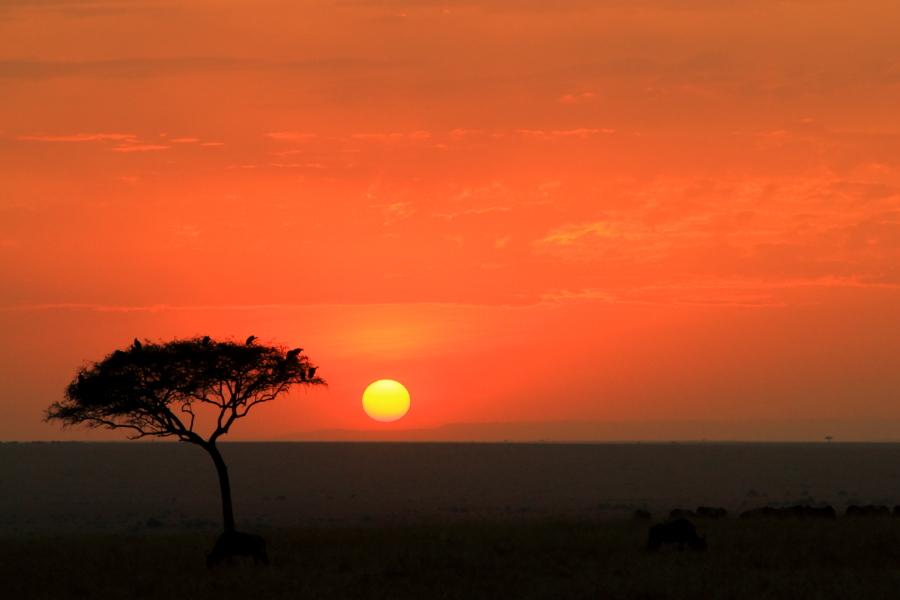 肯尼亚风光