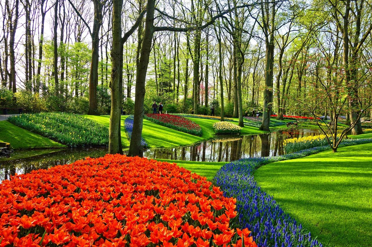 荷兰摄影图片